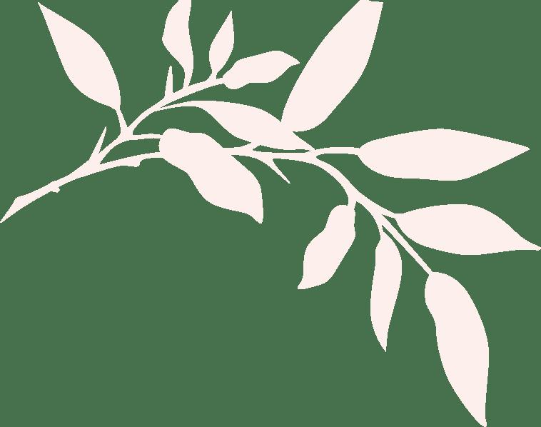 bg_6_1
